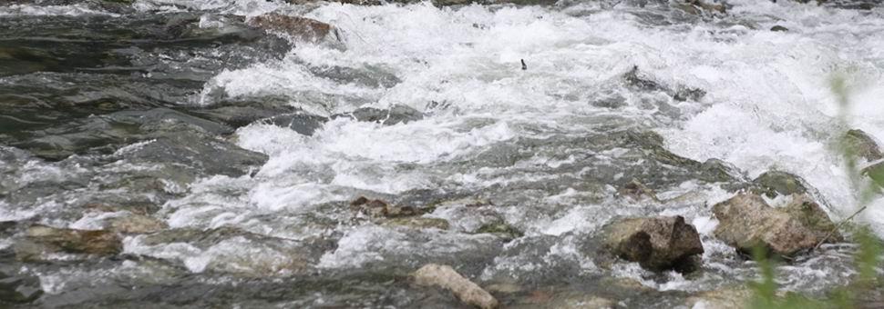 A vízügyi hatósági feladatokat 2014. szeptember 10-től a katasztrófavédelem látja el.