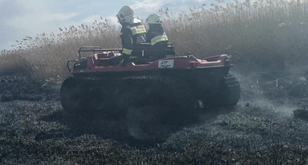 Tűz pusztított a berekben című videó előképe